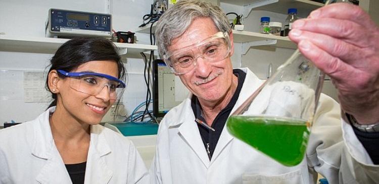 Революционный прорыв в науке: в Австралии создано топливо из солнечного света и воды