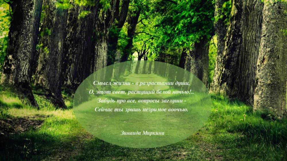 Что шелестит в лесу... Потрясающая поэзия Зинаиды Миркиной