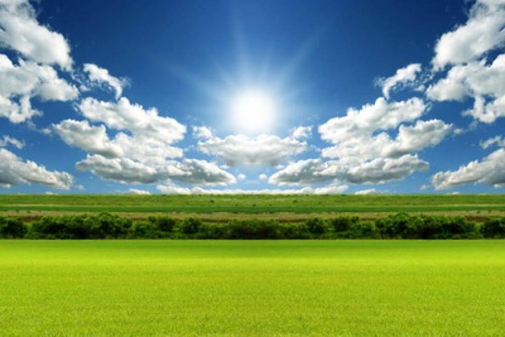Всемирный день окружающей среды. Наведём чистоту вместе!