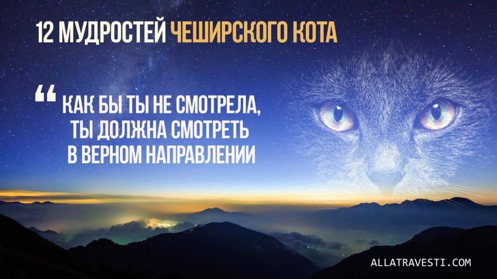 12 мудростей Чеширского Кота