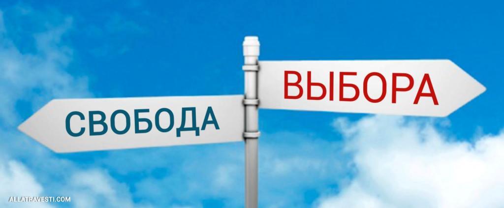 Свобода  <mark><b>выбора</b></mark>