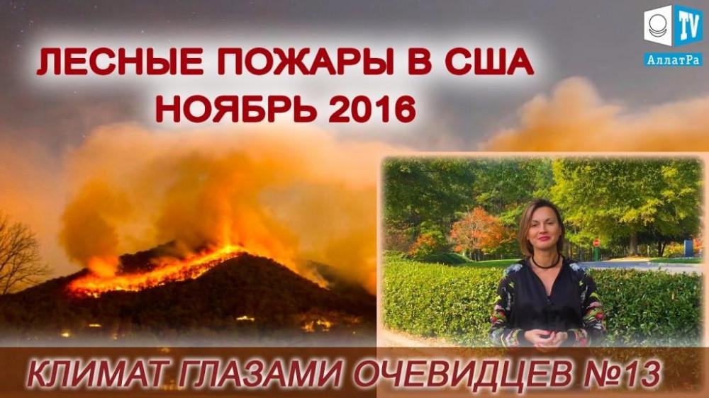 Лесные пожары в США ноябрь 2016. Климат глазами очевидцев №13