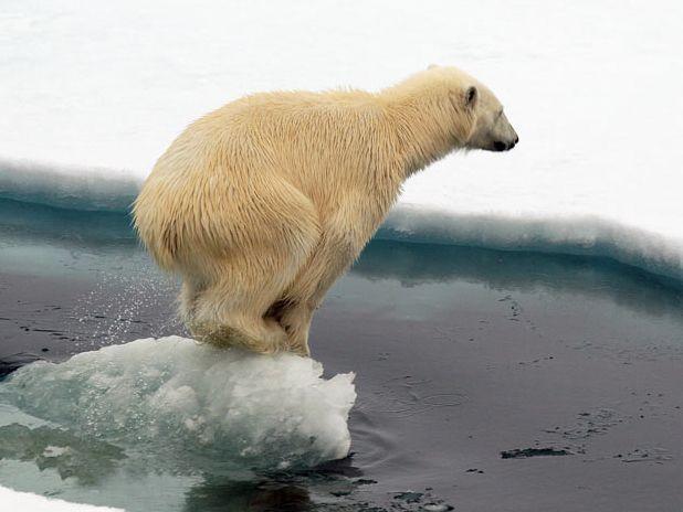 Зміна глобального клімату на планеті неминуча